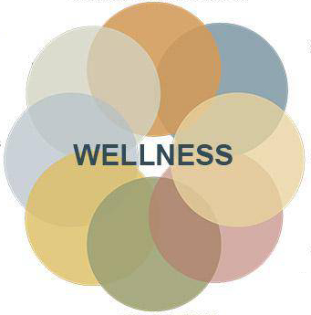 "Circular graphic with circles surrounding a centered ""Wellness"" title"